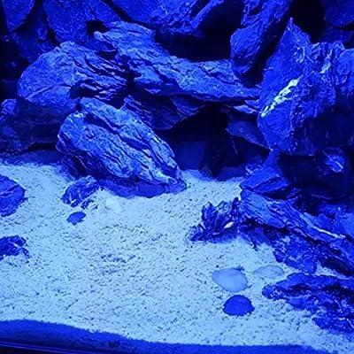 Éclairage d'aquarium d'aquarium à LED avec Commande Tactile pour récif de Corail