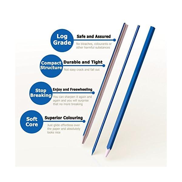 Meloive El Mejor Set de 72 lápices de Colores Mejores lápices para Colorear para Artistas, dibujantes, ilustradores, diseñadores de Interiores, Estudiantes y Adultos Amantes de colorar