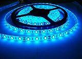 BestPriceEver 5 m Waterproof Adhesive LED Light Strip and Adaptor (Blue)