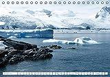 Antarktis - Das Reich der Pinguine (Tischkalender 2018 DIN A5 quer): Antarktis - Lebensraum der Pinguine - Ein Blickfang im Büro und zu Hause ... [Kalender] [Apr 01, 2017] Steinwald, Max - Max Steinwald