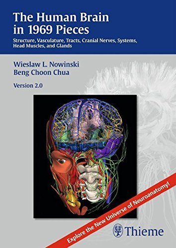 The Human Brain in 1969 Pieces 2.0: Structure, Vasculature, Tracts, Cranial Nerves, Systems, Head Muscles, and Tracts by Wieslaw L. Nowinski (2013-12-20)