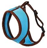 Kerbl 82645 Katzengeschirr Active mit Leine 120 cm, blau
