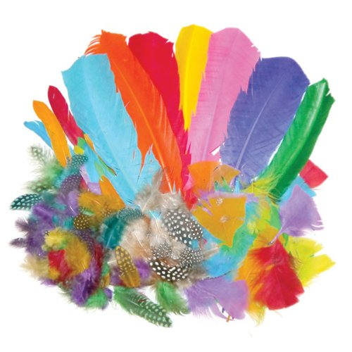 Creation Station 100 g  New Feathers   Bumper School Pack    Assorted Styles and Colours