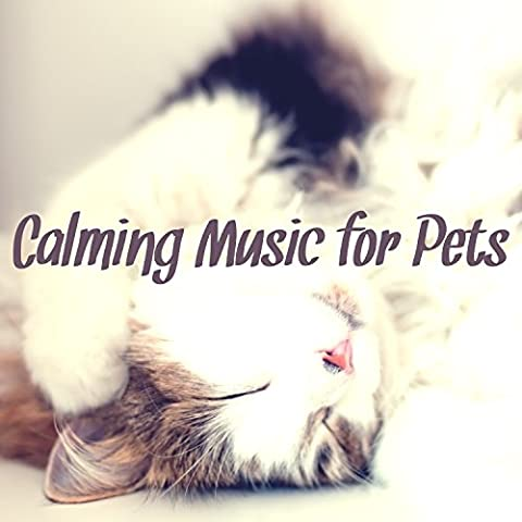 Calming Music for Pets – Instrumental Music to Keep the Company to Your Dog & Cat, Relaxing Soothing Nature Sounds Therapy for Animals