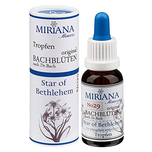 MirianaFlowers Star of Bethlehem 20ml Bachblüten Stockbottle