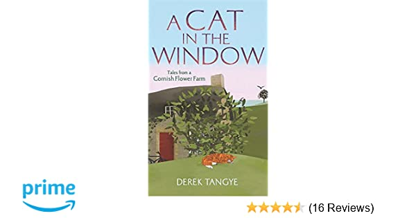 A cat in the window tales from a cornish flower farm minack a cat in the window tales from a cornish flower farm minack chronicles amazon derek tangye 9781472109910 books mightylinksfo