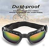 fish Fisch-Motorradbrille für Herren und Damen, Sonnenbrille für Radfahren, Outdoor, Sport, Winddichte Brille Motobike Zubehör, Siehe Abbildung, Einheitsgröße