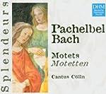 Pachelbel / Bach - Motets (Coll. Sple...