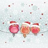 AvanCarte GmbH Servietten Weihnachten Winter 3 Mützen Vögel 20 Stück 3-Lagig 33x33cm