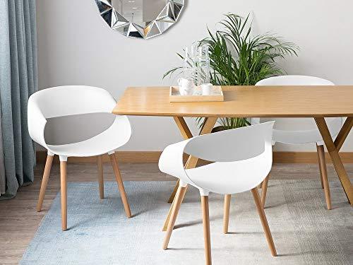 Moderner Esszimmerstuhl weiß aus Kunststoff 2er Set Charlotte - Kunststoff-stuhl Moderner