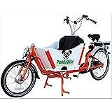 Fahrrad Tandem Cargo Custom Transport Menschen und Dinge grün weiß und schwarz
