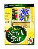 Anchor Stitch Kit - Purple Glory