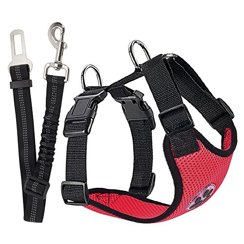 Car travel accessories for dogs the best shop for Travel gear car