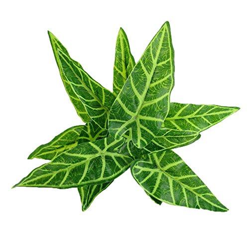 MagiDeal Grün Künstliche Taro Verlässt Blattpflanzen Büro Zu Hause Gartenhochzeit Dekor # 1