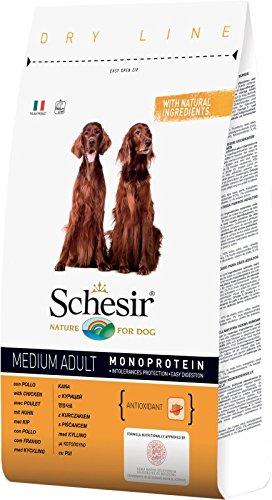 Schesir Dry Line Medium Adult con Pollo 3kg