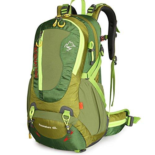 Outdoor Bergsteigen-Tasche/Rucksack-paar/Outdoor Wanderrucksack Grün