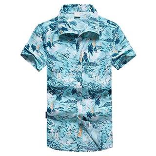 Anglewolf Mens Hawaiian Shirt Short Sleeve Beach Holiday Palm Tree Fancy Dress Hawaii Button Down Shirts Regular Fit Men's Classic Casual Floral Parrot(Blue 1,L)