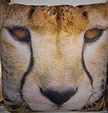 Kissen beiges Kissen Gepard / Auf den ersten Blick ein wenig ungewöhnlich . Eine bequeme Alternative zum gewöhnlichen Kissen und auf jedem Sofa ein echter Hingucker . Ein echter Hingucker Maße ca. 45 x 45 cm