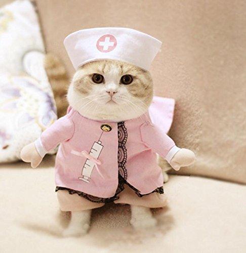 LadyBeauty Disfraz de Mascota Convertido en Ropa...