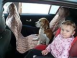 hochwertige Hundedecke mit Reißverschluß Autoschutzdecke Auto Schutzdecke Hunde 140x200cm beige