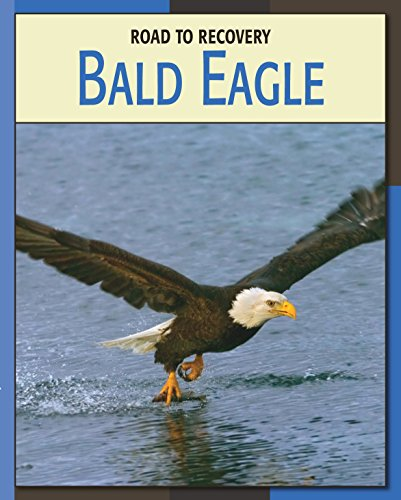Bald Eagle (21st Century Skills Library: Road to Recovery) (English Edition) - Juvenile American Bald Eagle