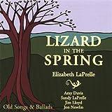 Songtexte von Elizabeth LaPrelle - Lizard in the Spring