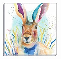 Artistic Animals Colourful Portrait Hare Evans Lichfield Canvas Wall Art Picture 40cm from Evans Lichfield