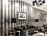 La Chambre Simple Papier Peint En Noir Et Blanc Salon À Rayures Verticales De La Méditerranée Orientale Papier Peint Est De 9,5 Mètres De Long Et 0,53 Mètres De Large (5 M * L),Gray