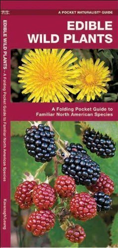 Edible Wild Plants: A Folding Pocket Guide to Familiar North American Species (Pocket Naturalist Guide Series) by Kavanagh, James 1st (first) (2001) Pamphlet