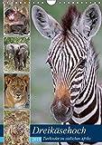 Dreikäsehoch - Tierkinder im südlichen Afrika (Wandkalender 2019 DIN A4 hoch): Nachwuchs in den Nationalparks (Monatskalender, 14 Seiten ) (CALVENDO Orte)