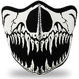 WINDMASK Neopren Biker Motorrad Maske Sturmmaske Skimaske - Skull Face Totenkopf #117