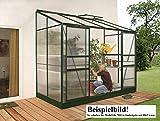 Gartenwelt Riegelsberger Anlehngewächshaus Ida - Ausführung: 7800 HKP 4 mm dunkelgrün, Fläche: ca. 7,8 m², mit 2 Dachfenster, Sockelmaß: 1,90 x 3,79 m