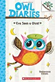 Eva Sees a Ghost (Owl Diaries, Band 2)
