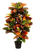 #7: Hyperboles 3 Foot Outdoor Artificial Croton Palm Tree UV Rated Potted Plant (Without Pot)