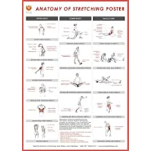 Stretching Wall Chart