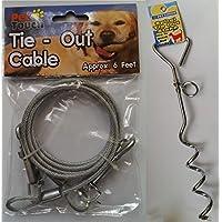 6ft Jardín Tie Cable de salida de perro Pet plomo alambre con estaca de espiral Spike