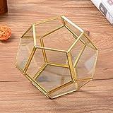 Glas Terrarium, outgeek Dekor Glas Pflanzenbehälter Geometrisch Multifunktional Glas Blumen Topf Tischplatten Pflanzer