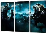 Harry Potter 3teilig im Gesamtmaß 120x80 cm, Leinwandbild auf Holzrahmen gespannt, Leinwandbild, 1A Qualität zu 100% Made in Germany! Kein Poster Kein Plakat! Echtholzrahmen mit beigelieferten Zackenaufhängern. Fertig bespannt, Sofort dekorieren.