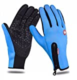 #6: AutoSun Windproof Touchsreen Warm Gloves Riding Motorcycle,Car,Bicycle Gloves Touch Screen Blue