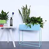 Yxsd Soporte de exhibición de la Planta de Tiesto del Metal, Soporte de exhibición del pote del jardín LxWxH: Aproximadamente 60 x 25 x 60 cm (Color : Azul)