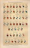 Studentverbindungen I, Berlin, Bonn, Breslau, Freiburg, Erlangen - Antiquarische Lithografie (Sammlerstück) von 1897