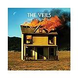 Songtexte von The Veils - Time Stays, We Go
