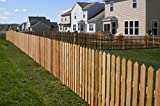 Picket Fence Pales 75mm x 22mm x 900mm | Pointed Top