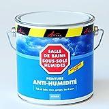 ARCASCREEN - Peinture anti humidité cave mur salle de bain sous-sol anti moisissures et salpêtre - blanc, 2.5L (jusqu a 10m²)