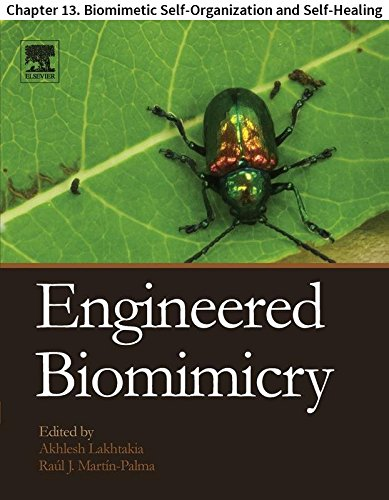 Engineered Biomimicry: Chapter 13. Biomimetic Self-Organization and Self-Healing (English Edition) -