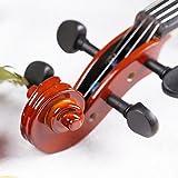 Esound 3/4 ML0011A Massivholz Firnis Violine mit Hartschalenkoffer, Schulterstütze, Bogen, Kolophonium und Zusätzliche Saiten