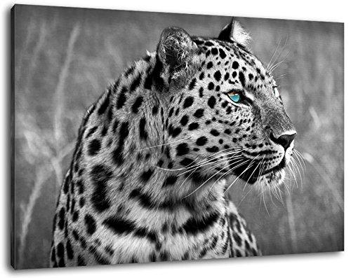 Gepard Schwarz/Weiß Format:100x70 cm Bild auf Leinwand bespannt, riesige XXL Bilder komplett und fertig gerahmt mit Keilrahmen, Kunstdruck auf Wand Bild mit Rahmen, günstiger als Gemälde oder Bild, kein Poster oder Plakat