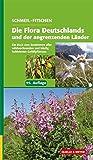 Schmeil/Fitschen: Die Flora Deutschlands und der angrenzenden Länder: Ein Buch zum Bestimmen aller wildwachsenden und häufig kultivierten Gefäßpflanzen - Siegmund Seybold