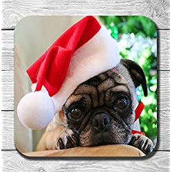 Navidad perro en gorro de Papá Noel bebidas posavasos precioso regalo