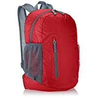 AmazonBasics Ultralight Packable Day Pack, Red, 25L